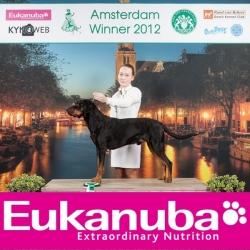 3467_amsterdam_winner_-2012_eukanuba_bob