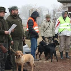polowanie-19-11-11-r-009