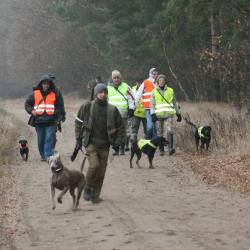 polowanie-19-11-11-r-033